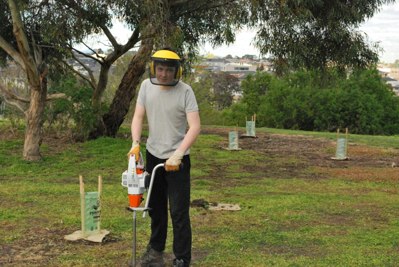 2015 July: Sheoak Woodland planting
