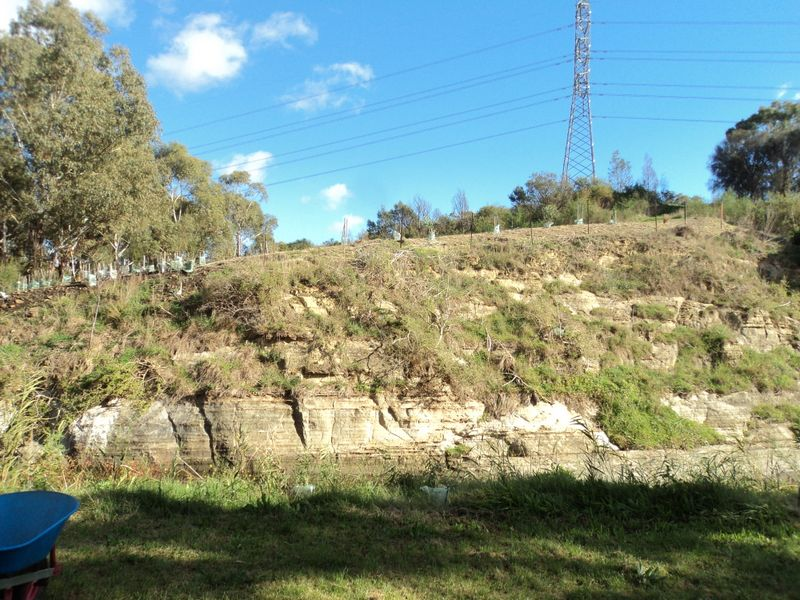 2013 May: Escarpment North Side of Silurian Cliff