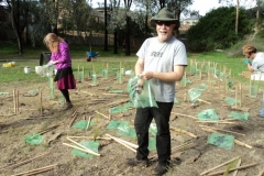 2014 May: Shrubland Restoration - Willow Replacement Site