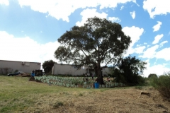 2012 October: Caravan park extension